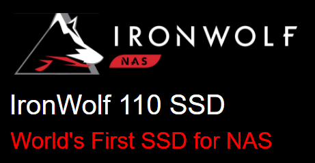 Seagate IronWolf SSD 110